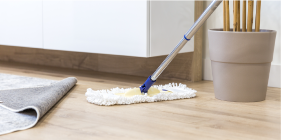 家まるごと掃除クリーニング