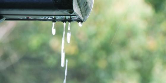 雨樋洗浄クリーニング